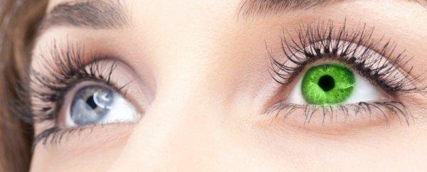 Люди с разным цветом глаз - linza.com.ua