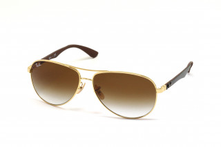 Солнцезащитные очки RAY-BAN 8313 001/51 61 - linza.com.ua